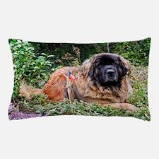Leonberger Dog Pillow Case