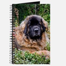 Leonberger Dog Journal