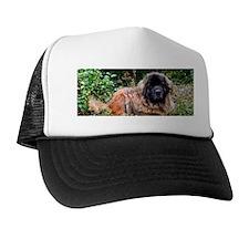 Leonberger Dog Trucker Hat