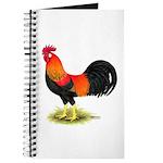 Brown Leghorn Rooster Journal