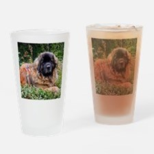 Leonberger Dog Drinking Glass