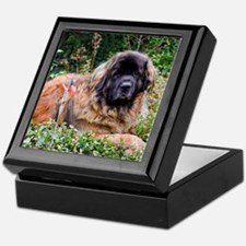 Leonberger Dog Keepsake Box