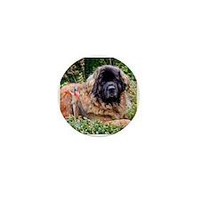Leonberger Dog Mini Button