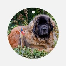 Leonberger Dog Ornament (Round)