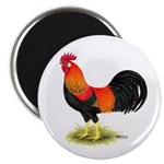 Brown Leghorn Rooster Magnet