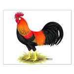 Brown Leghorn Rooster Small Poster