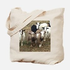 Pack of pygmy's Tote Bag