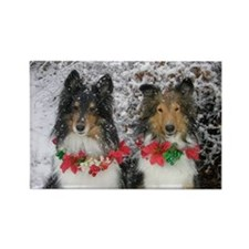 Shetland Sheepdogs in the Snow Ch Rectangle Magnet