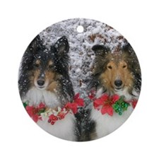 Shetland Sheepdogs in the Snow Chri Round Ornament