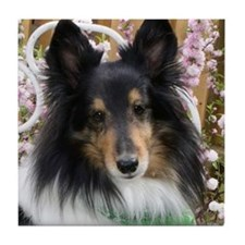 Tricolor Shetland Sheepdog Tile Coaster