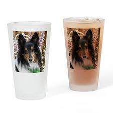 Tricolor Shetland Sheepdog Drinking Glass