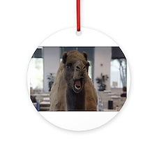 Crazy camel Ornament (Round)