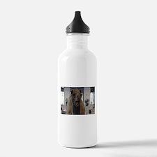 Crazy camel Water Bottle