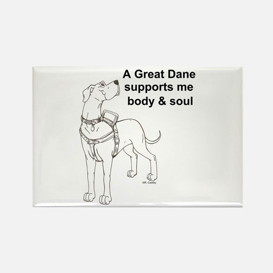 N GD Support Rectangle Magnet