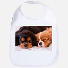Sleeping Buddies Bib