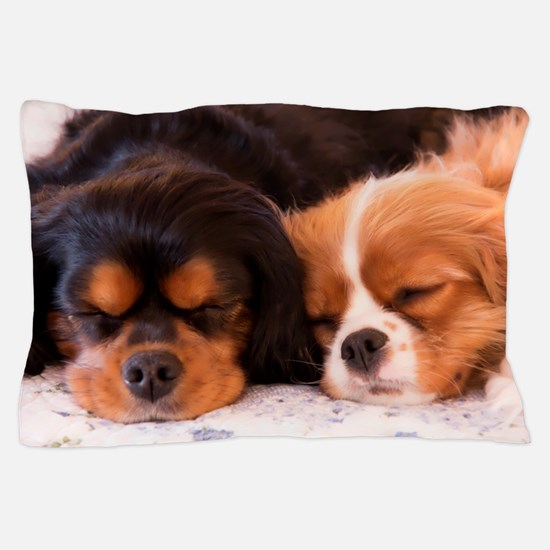Sleeping Buddies Pillow Case