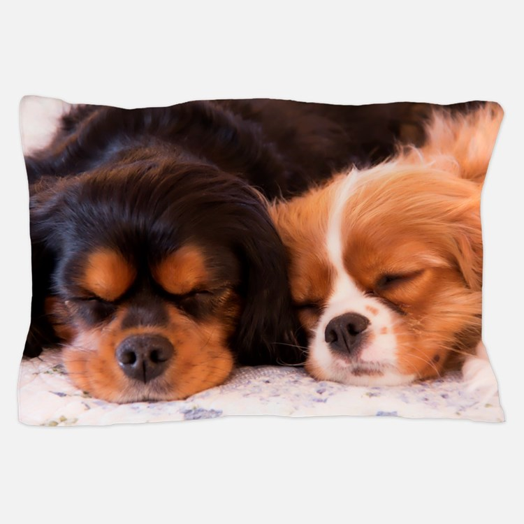 Sleeping Buddies Pillow Case