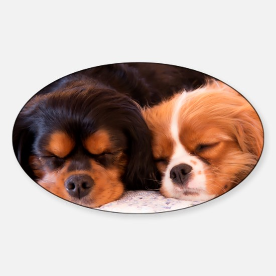 Sleeping Buddies Sticker (Oval)