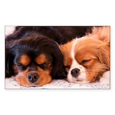 Sleeping Buddies Decal