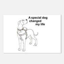 Special Dog Postcards (Package of 8)