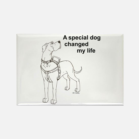 Special Dog Rectangle Magnet