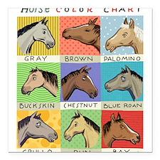"Horse Color Chart Square Car Magnet 3"" x 3"""
