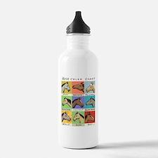 Horse Color Chart Water Bottle