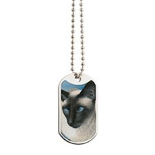 Boy Siamese Cat Dog Tags