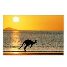 Australian Kangaroo on Be Postcards (Package of 8)