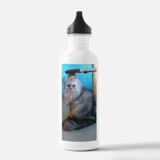 Cat 013 Water Bottle