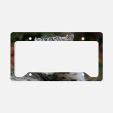 Ounce 003 License Plate Holder