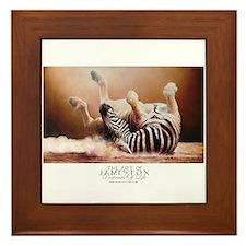 Oh Happy Day,zebra *framed Tile