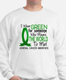 Means World to Me 1 Adrenal Cancer Sweatshirt