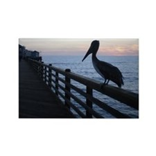 pelican at sunset Rectangle Magnet