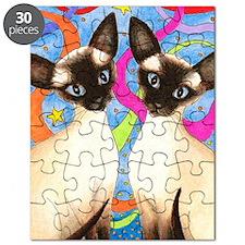 cat 480 Puzzle