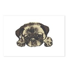 Pug Cutie Postcards (Package of 8)