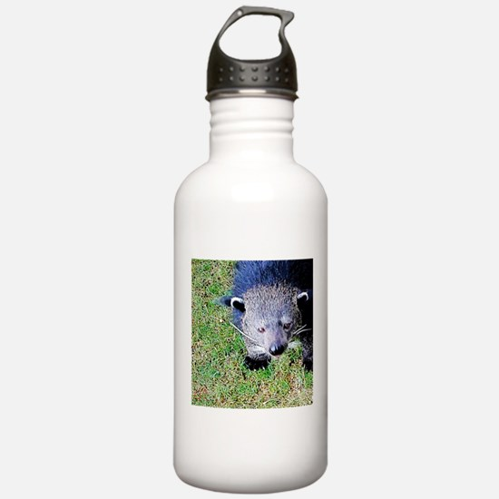 Hi There Water Bottle