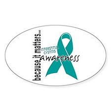 Awareness 1 Interstitial Cystitis Decal
