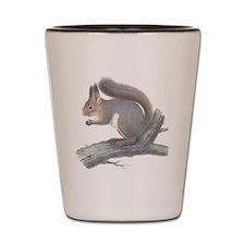Vintage Squirrel Shot Glass