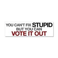 You Can't Fix Stupid Car Magnet 10 x 3