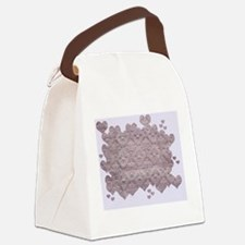 Heart Fabric Canvas Lunch Bag
