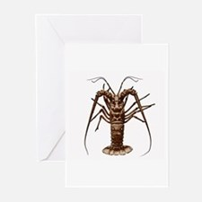 Spiny Lobster (Caribbean) Greeting Cards