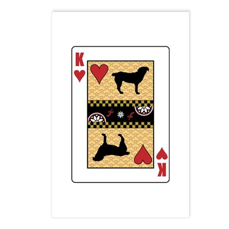 King Entlebucher Postcards (Package of 8)