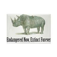 Endangered Rhinoceros Magnets