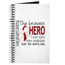 Bravest Hero I Knew Aplastic Anemia Journal
