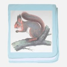 Cute Vintage Squirrel baby blanket