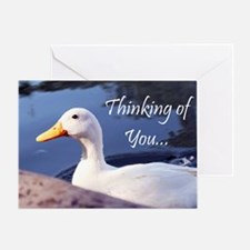Thinking Of You Duck Greeting Cards