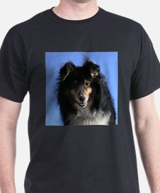 sheltie01 T-Shirt