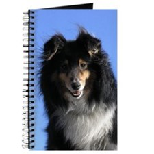 sheltie01 Journal