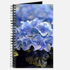 Blue hortensia Journal